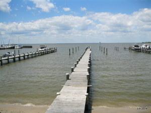 Zelinski View (1)